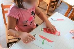 Γνωρίζοντας τα φθινοπωρινά φρούτα (3)
