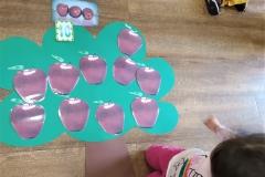 Γνωρίζοντας τα φθινοπωρινά φρούτα (7)
