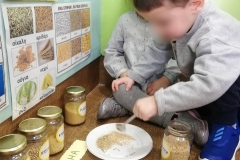 Project  Ψωμί-Ψωμάκι  Παιδικός Σταθμός (7)